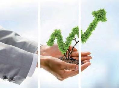 Aspectos colaterales en la valoración de empresas
